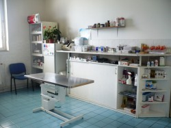 Veterinary clinic Červený vrch - surgery